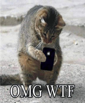 image of cat with an iPhone with text – OMG WTF