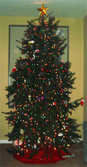 photo for Wordless Wednesday - The Decorated Dunkirk Systems Christmas Tree