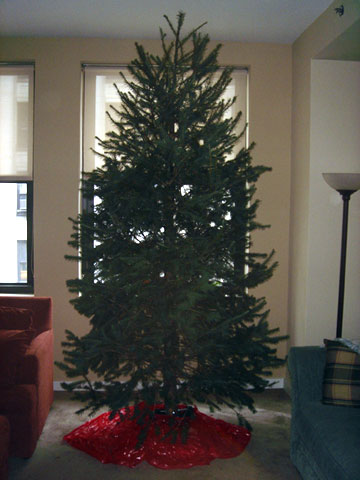 photo for Wordless Wednesday - The Dunkirk Systems Christmas Tree is Ready for Decorating