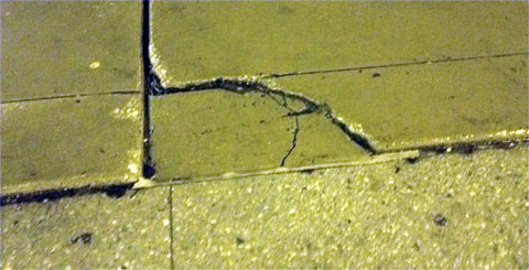 photo of frost heave damage to a Chicago sidewalk