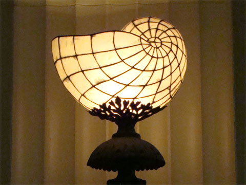 Wordless Wednesday - Light Fixture at the Shedd Aquarium in Chicago