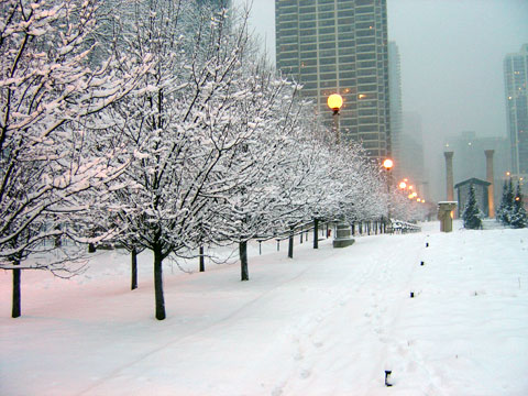 Wordless Wednesday - New Years Snow on Cancer Survivors Park in Chicago