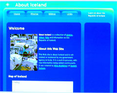 screen shot of AboutIceland.com with Google Ads and Maps blocked